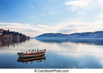 Boat with seagulls in the beautiful lake.