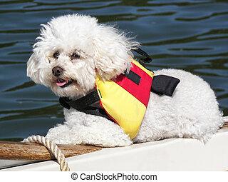 Boating Buddy