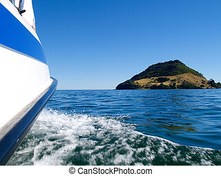 Boating on Tauranga  Harbour