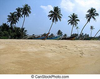 Boats at the beach near Kalutara. Sri Lanka, Indian Ocean
