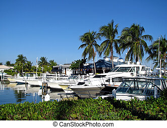 marina - boats docked at a south Florida marina
