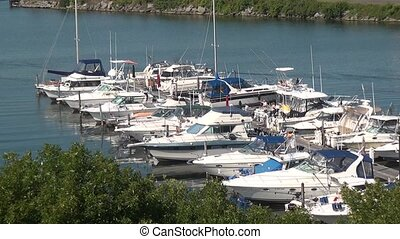 Boats in Harbor or Marina