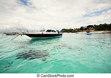 Boats; Mushroom Bay; Lembongan, Indonesia