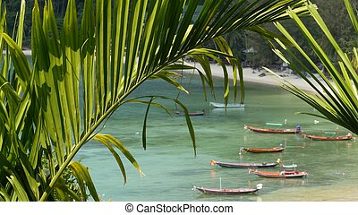 Boats near shore of island. Traditional colorful fishing vessels floating on calm blue water near white sand coast of tropical exotic paradise island. View through green palm leaves. Koh Phangan
