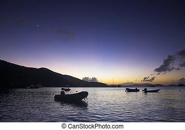 Boats near the shore