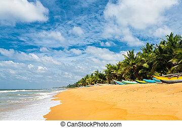 Fishing boats resting on empty beach in Sri Lanka
