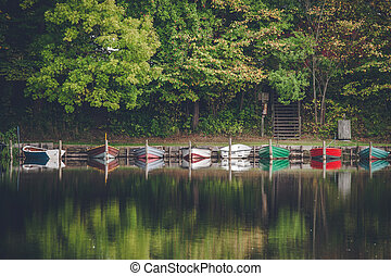 Boats on a row at the shore