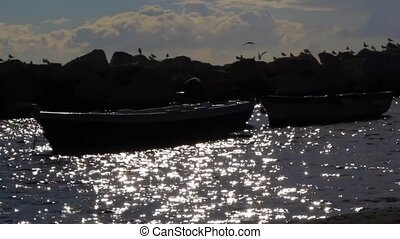 Boats on the backlit