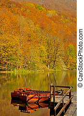 Boats on the lake with forest in ba