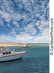 Boats on the Red Sea coast