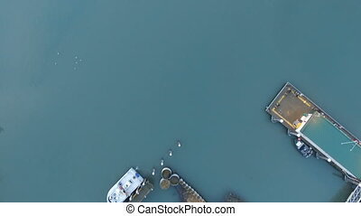 Aerial view of boats sitting in slips at the Homer Marina