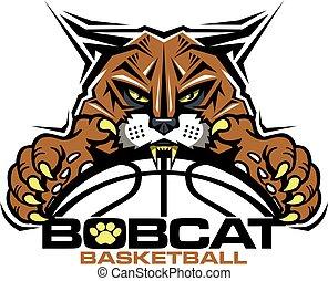 bobcat, baloncesto