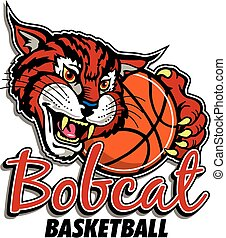 bobcat, basketboll