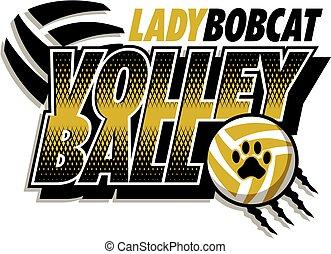 bobcat, dama, voleibol
