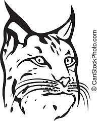 (bobcat, hoofd, head), lynx