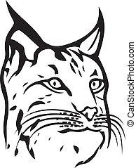 (bobcat, huvud, head), lodjur