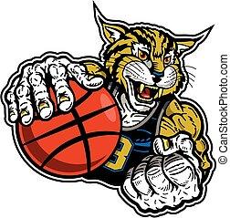 bobcat, jugador de baloncesto