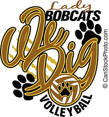 bobcats, dama, siatkówka