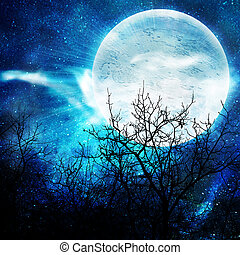 bobo, noturna, ilustração, lua