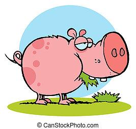 bocado, pasto o césped, cerdo rosa