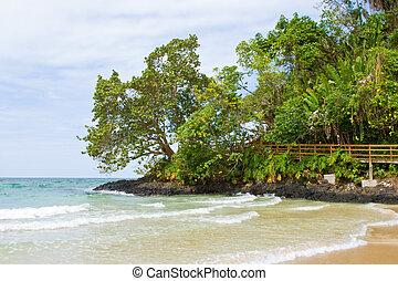 Bocas del Toro Beachscape - Beautiful beachscape shot in...