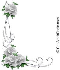 boda, frontera, blanco, rosas