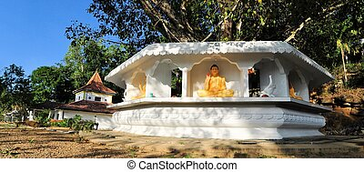 Bodhi tree in front of Buddhist temple, Ella, Sri Lanka