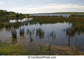 Bodmin Moor, Colliford Lake, Cornwall, Water Reservoir