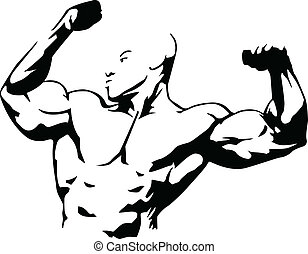 Body bilding - Vector illustration of muscle man suitable...