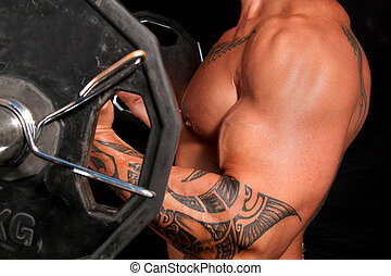 Body builder with big biceps working out with weights