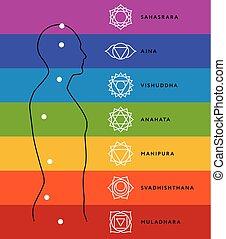 body., centri, umano, sistema, energia, chakra