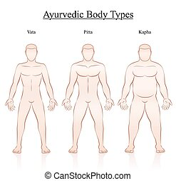 Body Constitution Types Vata Pitta Kapha - Ayurvedic body...