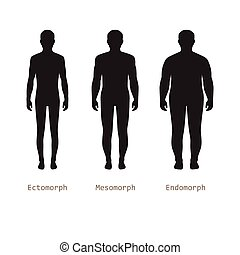 body male types, silhouette man naked figure, front human...