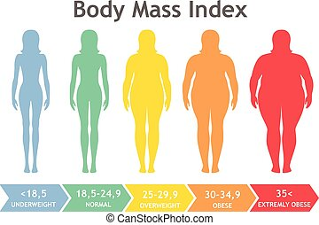 Body mass index vector illustration from underweight to ...