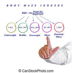 Body Max Index