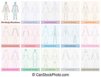 Body Meridians Chart Woman Colors - Body meridian chart of a...
