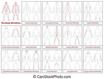 Body Meridians Schematic Diagram