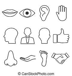 Body parts icon. Vector illustration, flat design.