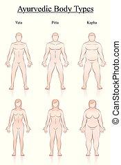 Body Weight Slim Normal Fat Men Women Types