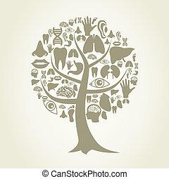body2, parte, albero
