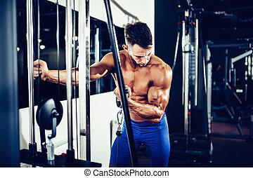 bodybuilder, biceps, jonge, oefening