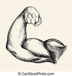 Bodybuilder Biceps - Sketch illustration of muscular human...