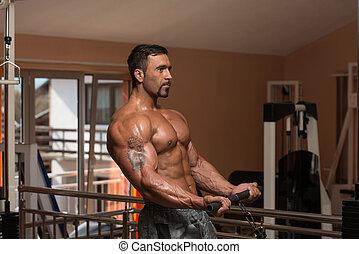 Bodybuilder Doing Exercise For Biceps
