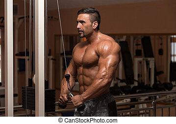 Bodybuilder Doing Exercise For Triceps