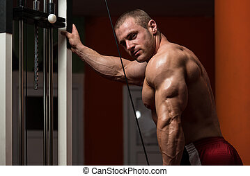 Bodybuilder Doing Exercise For Triceps - Young Bodybuilder...