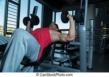 Bodybuilder Exercise With Hand Weights On Bench