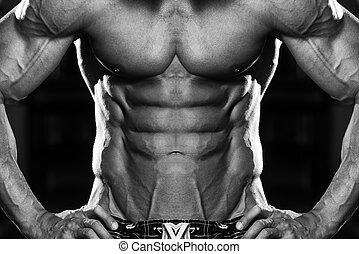 bodybuilder, forte, seis empacotam