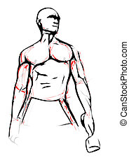 bodybuilder illustration - bodybuilder vector illustration