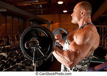 bodybuilder, in, utbildning rum