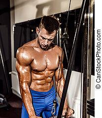 bodybuilder, jonge, oefening, triceps